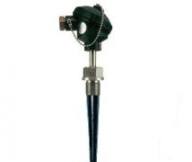WZPN-631固定螺纹锥形套管耐磨热电阻