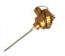 WRCK2-132接壳式双支铠装热电偶