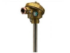 WRE-130无固定装配式热电偶
