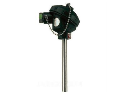 WZP-131無固定防水式熱電阻